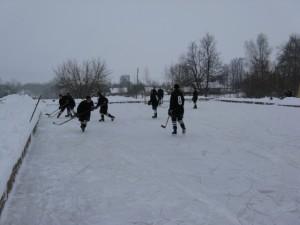 хоккей на льду играть