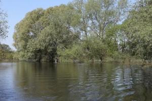глубокая река