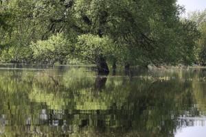 берег реки фото